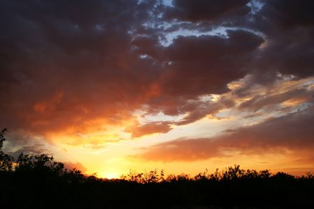 The sun sets in a cloudy sky over a mesquite bosque in southeastern Arizona setting the sky on fire.