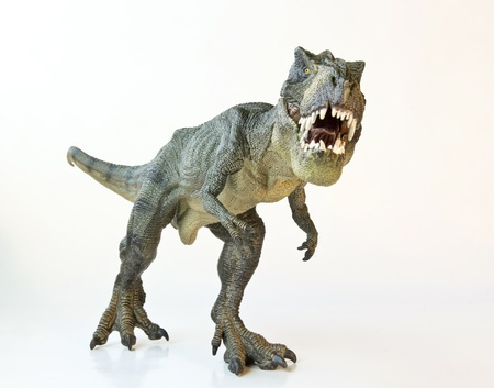 A Tyrannosaurus Rex Hunts Against a white Background