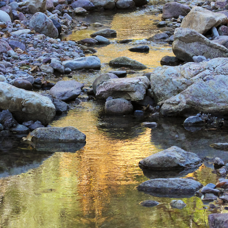 A Gentle Creek Reflects the Greens and Golds of an Autumn Evening