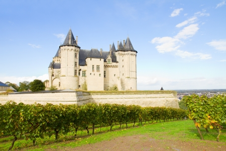 Saumur castle and vineyards  in the Loire Valley, France