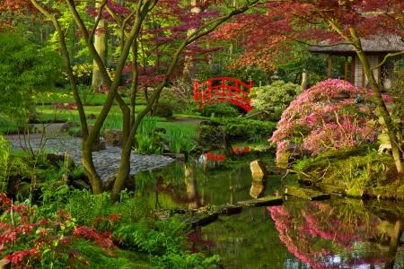 Japanese Garden in Spring Mural Wallpaper