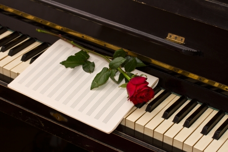 empty notes paper with one red rose on vintage piano