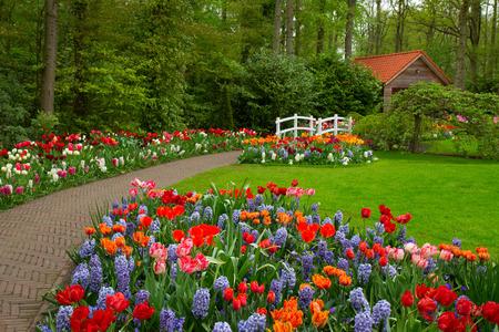 Foto de Hut in a spring - Imagen libre de derechos