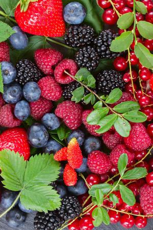 ripe of  fresh berries