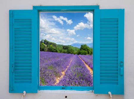Foto de provence window with  lavender flowers field, France - Imagen libre de derechos