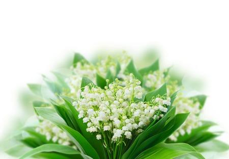 Foto für Bunch of Lilly of valley flowers over white background - Lizenzfreies Bild