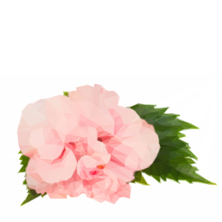 Low Poly Illustration Pink Fresh Hibiscus Double Flower With Green