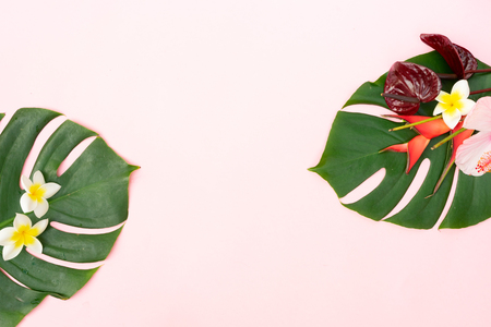 Photo pour Tropical green fresh monstera leaves and exotic flowers on pink  with copy space, flat lay - image libre de droit