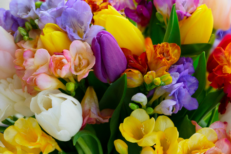Photo for Bouquet of tulips and freesias flowers natural background close up - Royalty Free Image