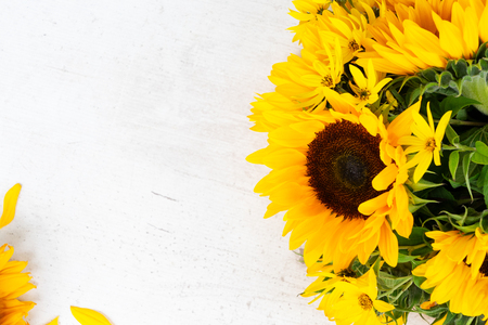 Photo for Sunflowers fresh yellow flowers and petals on white wooden table background - Royalty Free Image