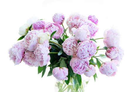 Photo pour Fresh peony flowers pink and white round bouquet close up isolated on white background - image libre de droit