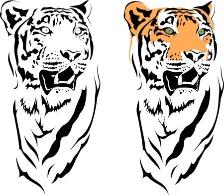 tigers year