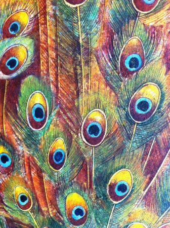 Peacock tail background.