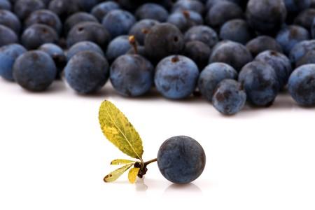 Macro shot of fresh blueberries