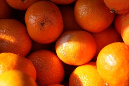 Vegetables and Fruits Arrangement.