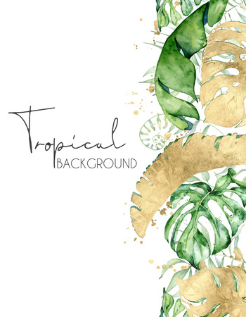 Foto per Tropical watercolor leaves banner isolated on white background. Exotic floral designs. Hand drawn illustration - Immagine Royalty Free