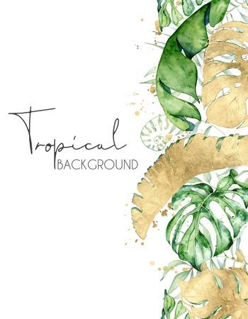 Foto de Tropical watercolor leaves banner isolated on white background. Exotic floral designs. Hand drawn illustration - Imagen libre de derechos