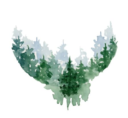 Photo pour Watercolor pine trees hand drawn illustration isolated on white background - image libre de droit