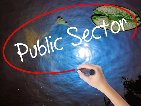 Woman Hand Writing Public Setor with marker over transparent board. Isolated on nature. Business concept. Stock Photo