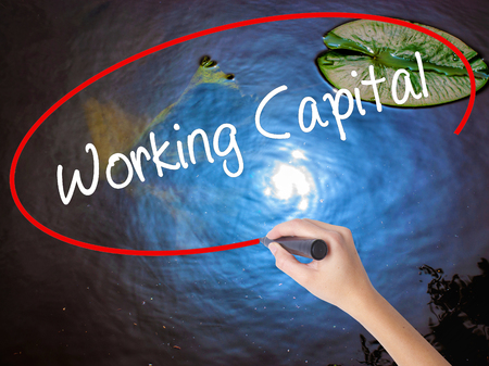Woman Hand Writing Working Capital with marker over transparent board. Isolated on nature. Business concept. Stock Photo