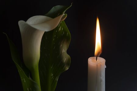 Photo for A close up of an orange candle and flame and lily flowers on a dark background. - Royalty Free Image