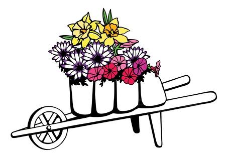 Wheelbarrow full of spring flowers