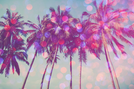 Palm trees on tropical beach with party glamour bokeh overlay, double exposure effect stylized