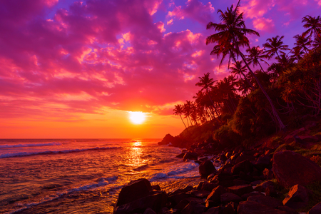 Sunset on tropical beach with palm trees silhouettes