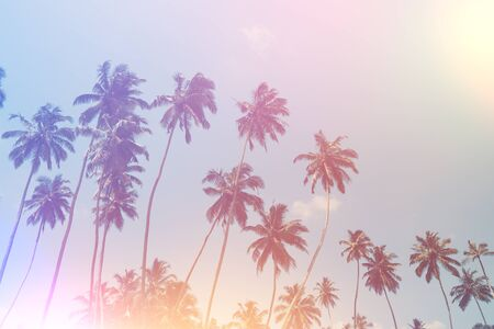 Plam trees on summer tropical beach vintage toned and stylized with vintage film light leaks