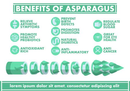 Illustration pour Benefits of Asparagus Infographics - Vector flat design art - image libre de droit