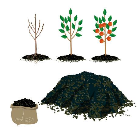 Illustration for Set of vector illustration for gardening - Royalty Free Image