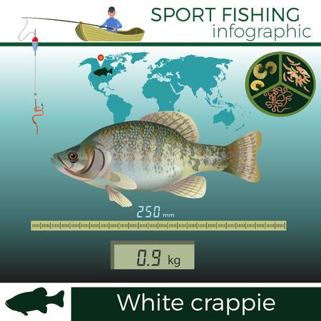 تصاميم جاهزة للتحميل بعنوان north american game fish