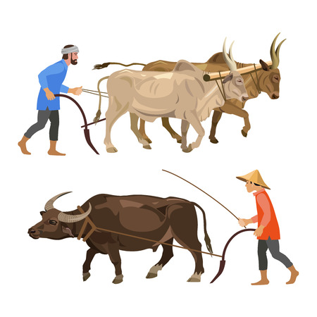 Illustration pour Peasants plow the land with oxen. Vector illustration isolated on the white background - image libre de droit