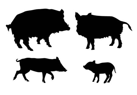 Illustration pour Set of silhouettes of wild pigs. Vector illustration isolated on white background - image libre de droit