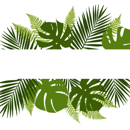 Illustration pour Tropical leaves background with white banner. Palm,ferns,monsteras. Vector illustration - image libre de droit