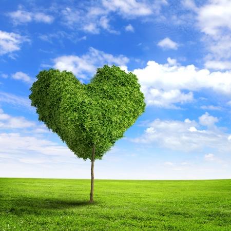 Foto de Green grass heart symbol against blue sky - Imagen libre de derechos