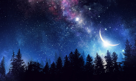 Photo for Night forest and starry sky with milky way. Mixed media - Royalty Free Image