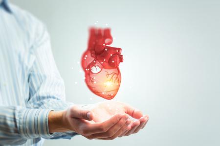 Photo pour Man s hands showing anatomical heart model. Mixed media. - image libre de droit