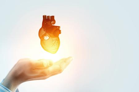Photo pour Man s hands showing anatomical heart model. Mixed media - image libre de droit
