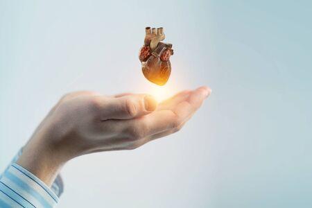 Foto de Man s hands showing anatomical heart model. Mixed media. . Mixed media - Imagen libre de derechos