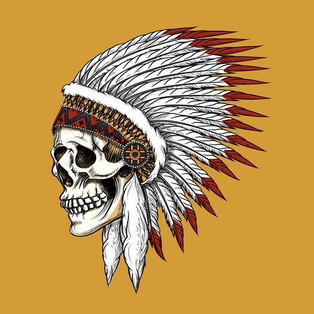 Illustration pour Vector indian skull - image libre de droit