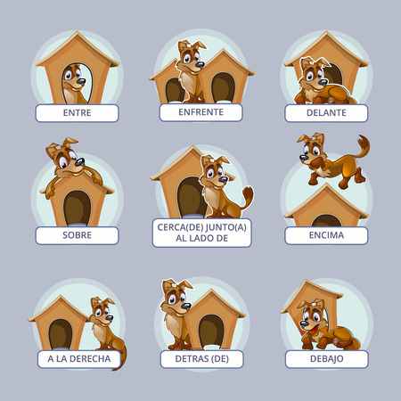Cartoon dog different poses. Spanish prepositions place. Vector illustration preschool kids. Position domestic place mammal, breed or pedigree puppy