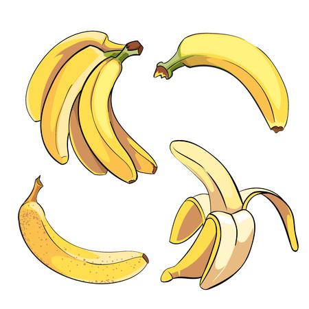Illustration pour Bananas set in cartoon style. Fruit food sweet ripe, vector illustration - image libre de droit