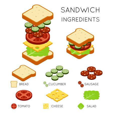 Vector sandwich ingredients in 3D isometric style. Sandwich illustration, food sandwich, design american sandwich burger
