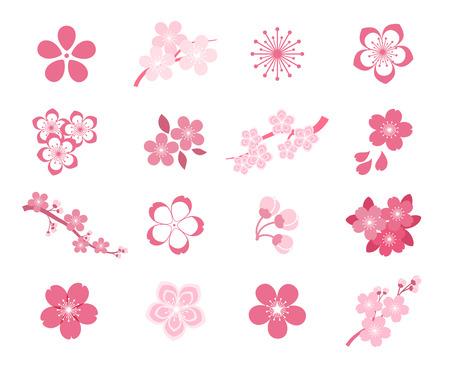 Cherry blossom japanese sakura vector icon set. Nature japanese cherry, spring floral sakura, blossom flower sakura, icon sakura illustration