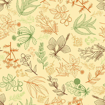 Illustration pour Herbs background in hand drawn style. Mixed plants pattern for food market and shop packaging. Vector illustration - image libre de droit