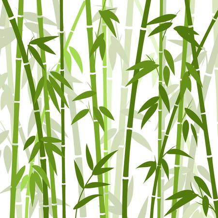 Chinese or japanese bamboo grass oriental wallpaper vector illustration. Tropical asian plant background