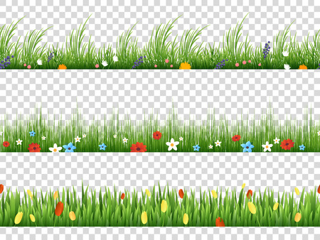 Illustration for Vector green grass and spring flowers nature border patterns on transparent background vector illustration. Herbal and flower lawn border - Royalty Free Image
