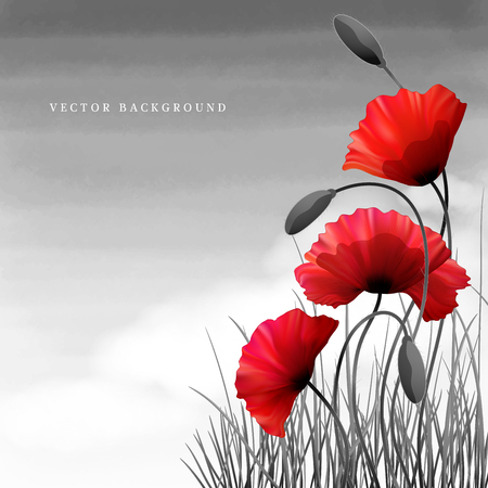 Illustration pour Vector background or card. Poppies and grass. White cloud and watercolor sky. Imitation black and white photos. Perfect for announcements, invitations and greetings. Remembrance Day - image libre de droit