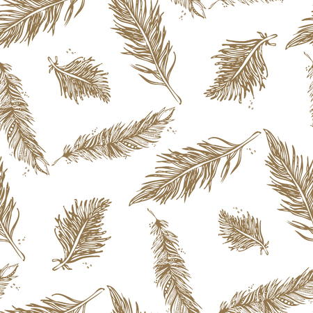 Seamless Pattern with Feathers beige on a white background. Vintage Artistically hand drawn stylized tribal feathers. Doodle Ink drawing. Boho style. Stock vector.